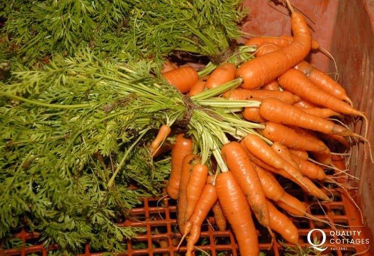 Haverfordwest Farmers Market takes place every other Friday with fresh local produce on offer