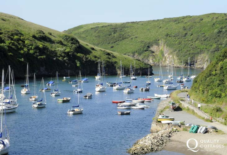 Solva harbour - has interesting craft shops, galleries and a wide choice of places to eat and drink