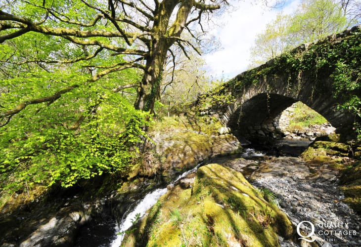The beautiful bridges and waterfalls in the Welsh woodlands