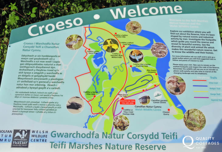 The Welsh Wildlife Centre, Cilgerran is situated within the 270 acres of Teifi Marshes Nature Reserve with swans, otter trails, Mallard hides and lots of activities to enjoy. Delicious food is served in the amazing curved-glass visitors centre