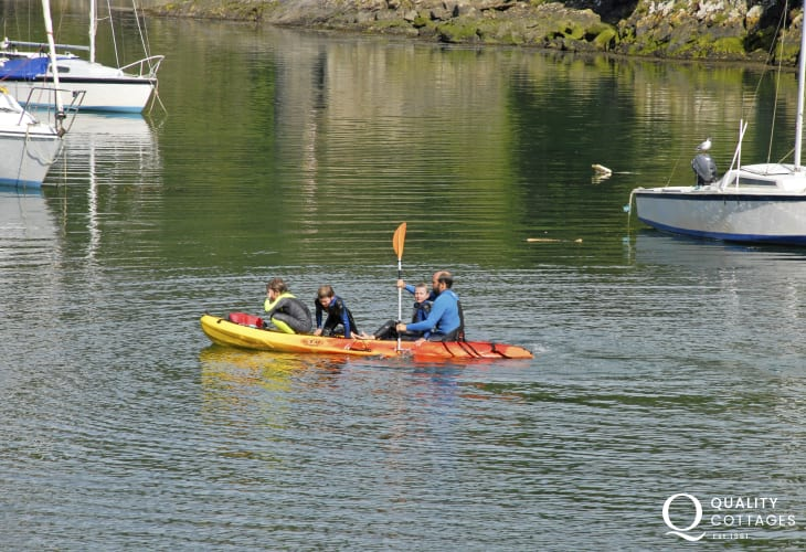 Try kayaking or paddle boarding on the Solva River at high tide