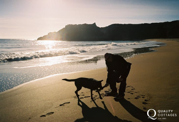 Many of our holiday cottages welcome dogs - having fun at the end of the day