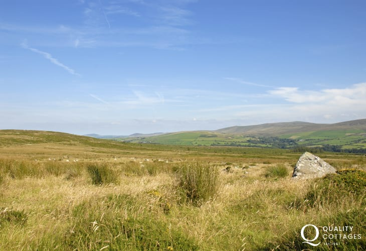 The ancient Preseli Hill's - heather coated moors dotted with `cromlechs' to roam