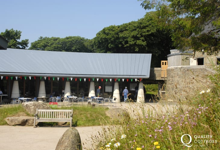 Oriel y Felin in St Davids �?? an excellent café with exhibitions and activities taking place throughout the year