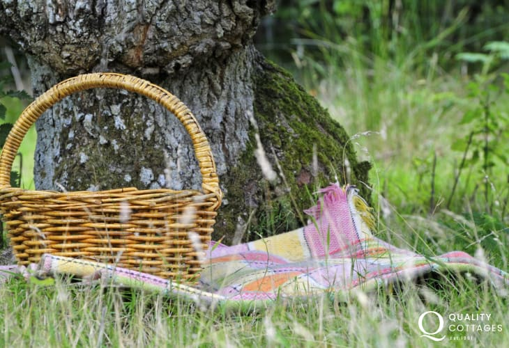 Picnicking in the Snowdonia National Park