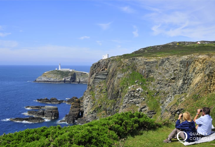 Birdwatchers at South Stack