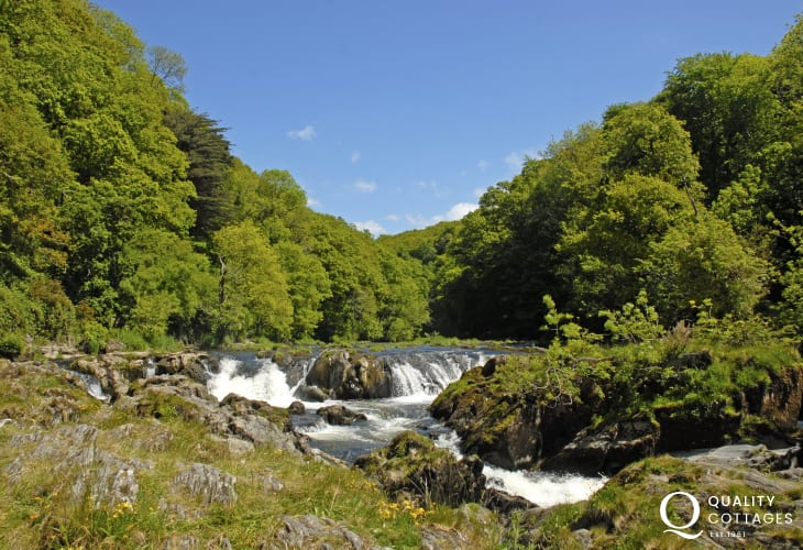 Cenarth waterfalls famous for the salmon leap - a spectacular site in full flood