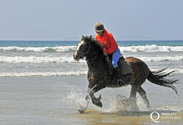 East Nolton Riding Stables cater for all levels of experience - gallop through the waves on a beach ride