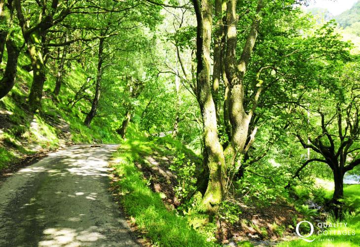 Abergwesyn walks and riverbank picnics