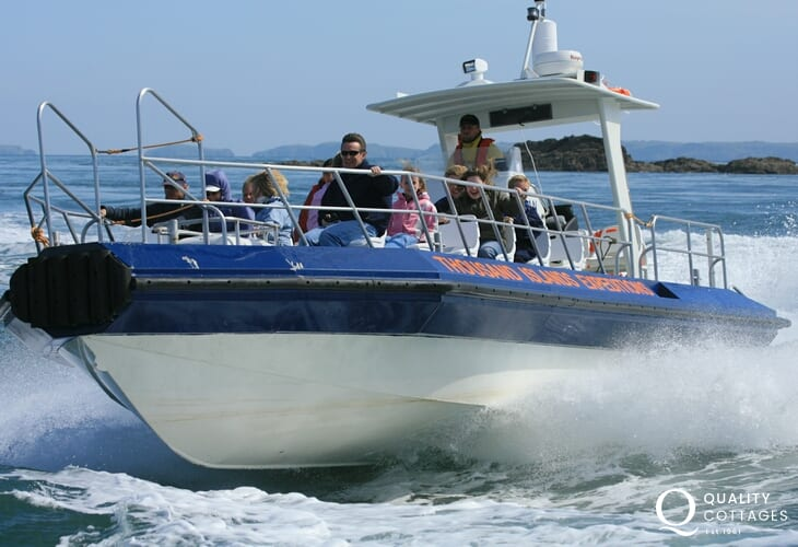 Enjoy an exhilarating boat trip around the islands off the Pembrokeshire Coast.