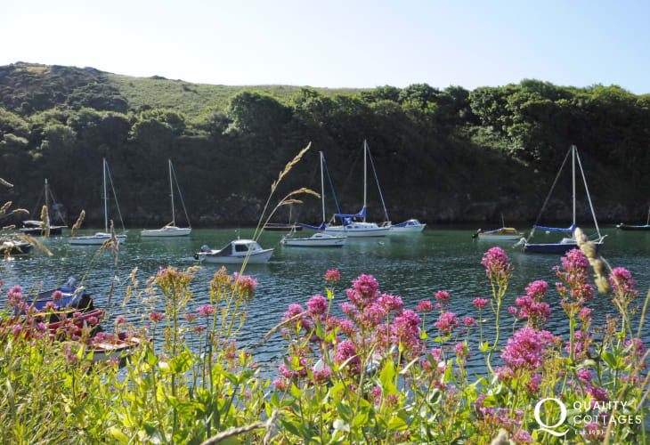 The boats resting in the harbour at Solva Quay