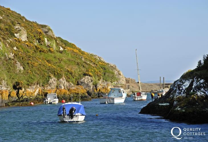Porthclais Harbour (National Trust)
