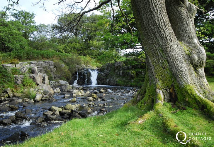 Wild and unspoilt remote area of Snowdonia. Wooded valleys with waterfalls, the Rhinog mountains, Roman Steps and the enchanting Cwm Bychan lake