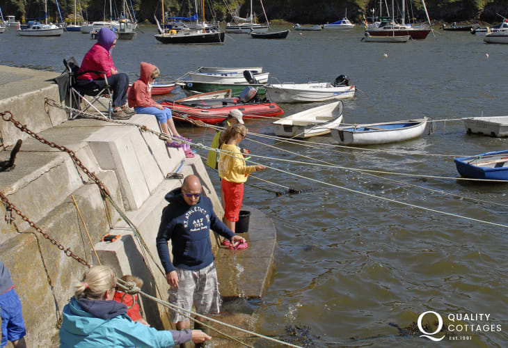 Solva's harbour wall is a great place for crabbing - fun for all the family!