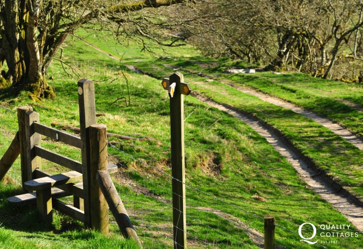 Mid Wales walks on the Offas Dyke & Kerry Ridgeway