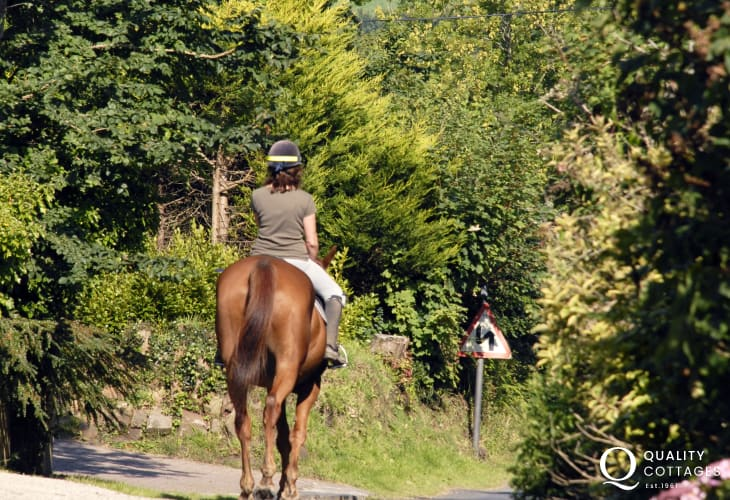 A quiet winding country lane deep in the heart of the Pembrokeshire Coast National Park