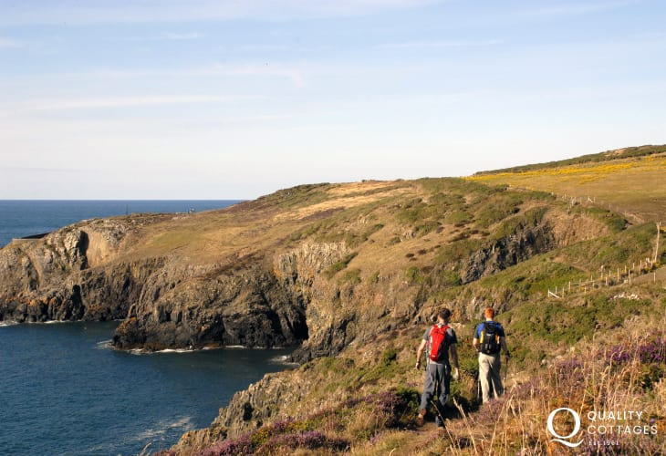 Choose the Pembrokeshire Coastal Path for fabulous cliff top walks