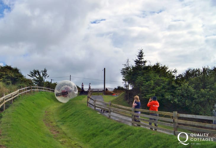 Try Zorbing at Nolton Stables - rolling down a hill in an inflatable ball