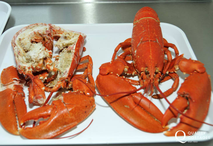 Pembrokeshire lobsters, freshly prepared, are available through the summer months in Upper Solva and Newgale