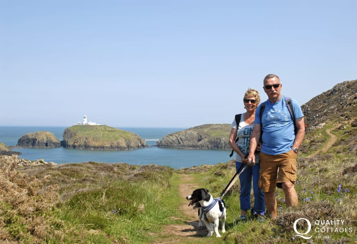 The coast path near Strumble Head Lighthouse - most quality cottages welcome pets