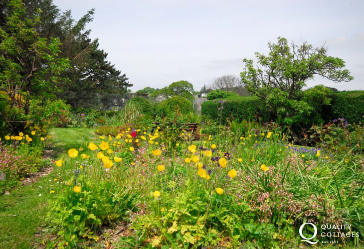 Criccieth holiday cottage garden