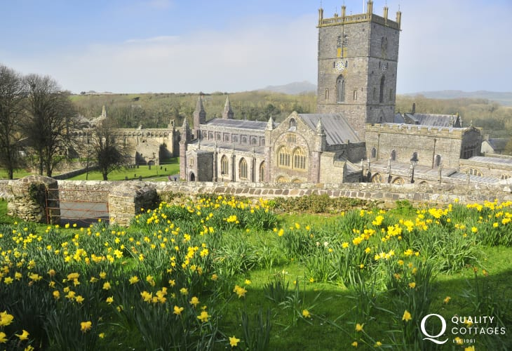 Magnificent St Davids cathedral over looked by the daffodils in spring