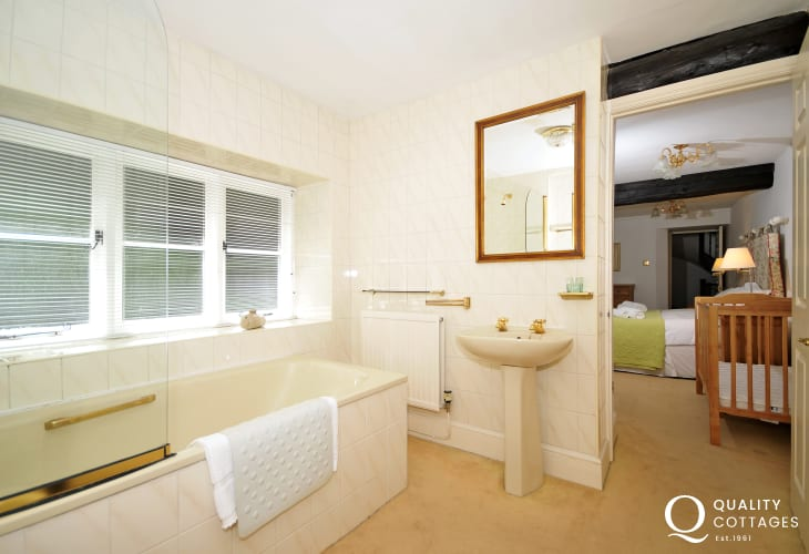 Abergavenny holiday cottage - bathroom