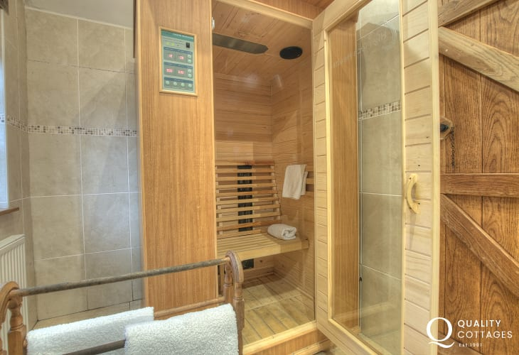 Pembrokeshire holiday cottage - master en-suite with sauna