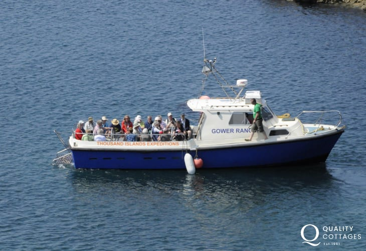 Boat trips to suit all tastes leave from St Justinians and Whitesands Bay