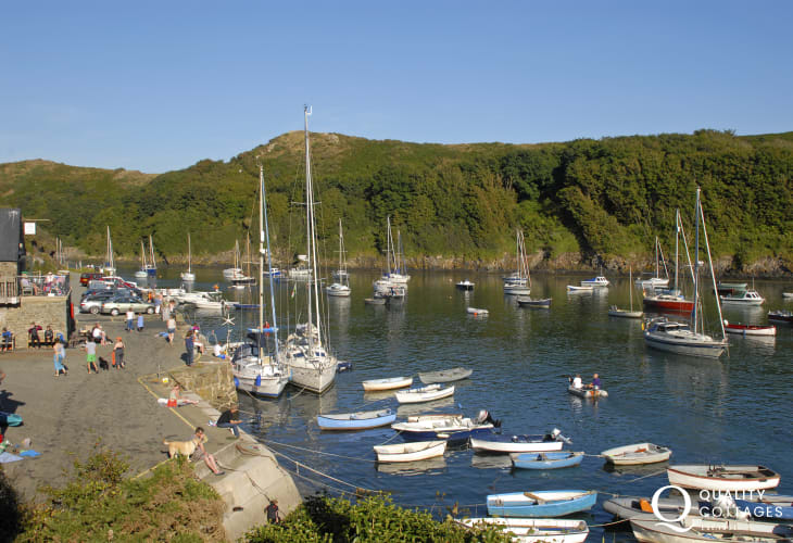 Solva Harbour - good spot for food at the Sailing Club or crabbing at high tide