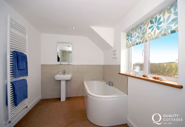 Cardigan Bay holiday house -master en-suite bathroom with walk-in shower