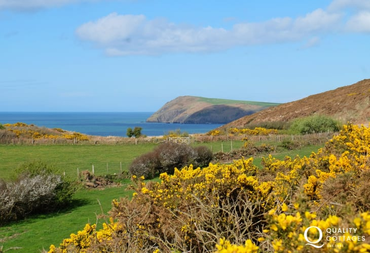 North Pembrokeshire coast viewed from Seaspray cottage