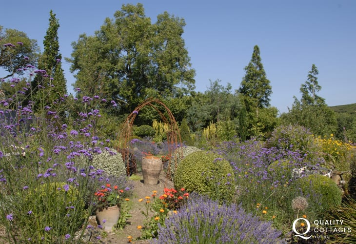 Do visit Dyffryn Fernant Garden - magical garden grown out of a wilderness of rock, marsh, bog and clay