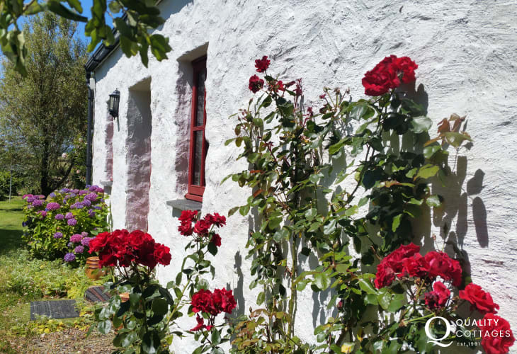 Newport Pembrokeshire coastal cottage