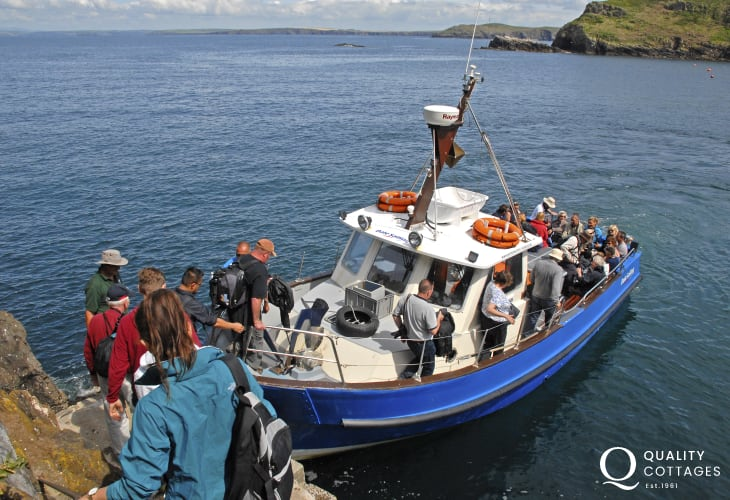 Take the short boat trip over to Skomer Island - home to a wide variety of breeding seabirds during the summer months
