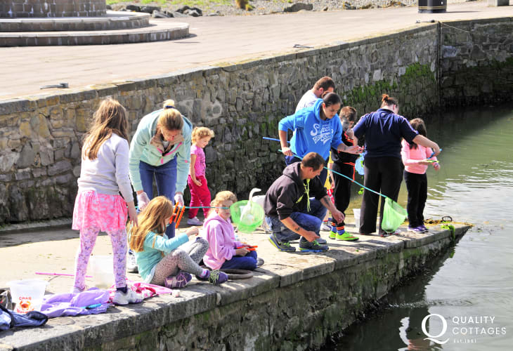 Go 'crabbing' off Aberaeron's harbour wall - fun for adults and children