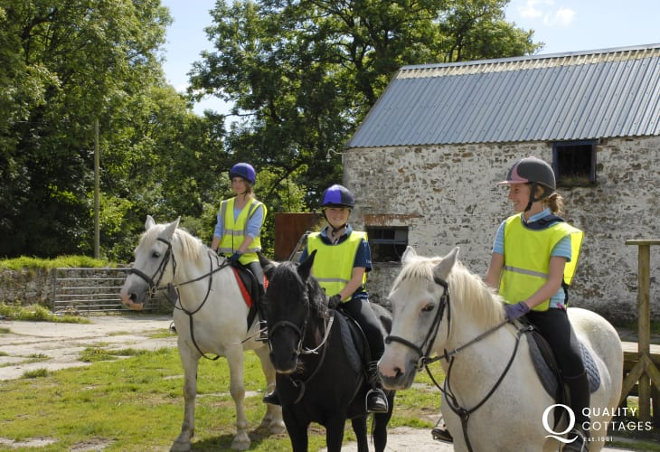 Marros Riding Centre cater for all levels of riders - enjoy a beach ride, woodland hack and even 'Own a Pony' for the day