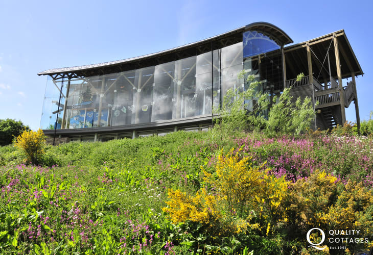 The Welsh Wildlife Centre, Cardigan - an award winning visitor centre with a fantastic cafe serving fresh home made food