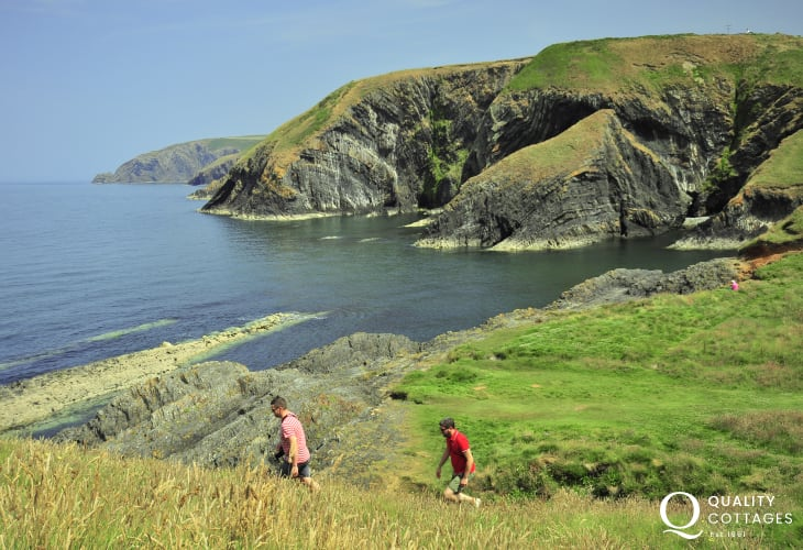 On the Pembrokeshire Coast Path at Ceibwr - stunning rock formations along the way
