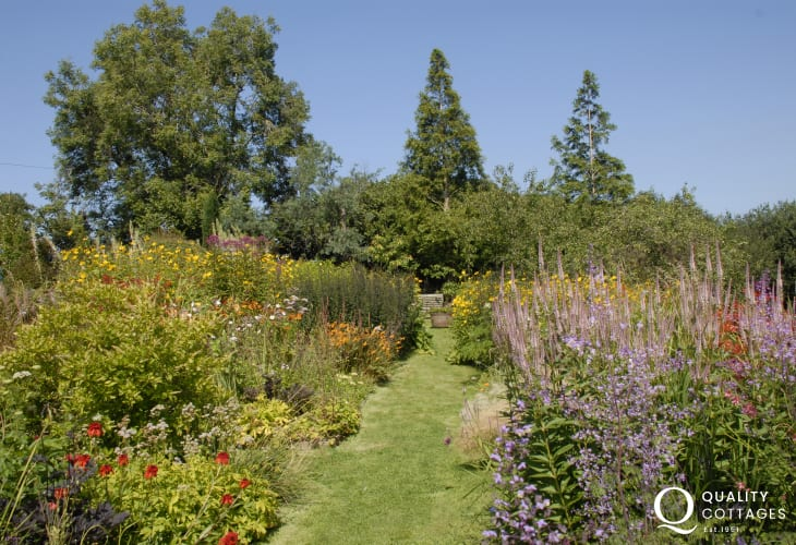 Dyffryn Fernant Gardens - a Great Garden of West Wales with an eclectic mixture of plants and shrubs