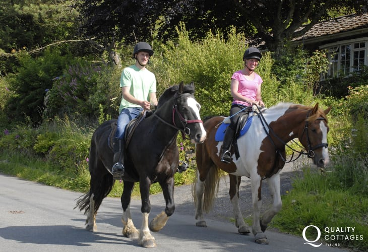 Nolton Riding Stables offer beach rides or trekking in the beautiful Pembrokeshire countryside