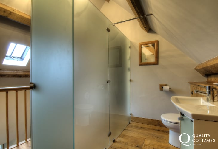 Luxury holiday house Brecon Beacons - toilet