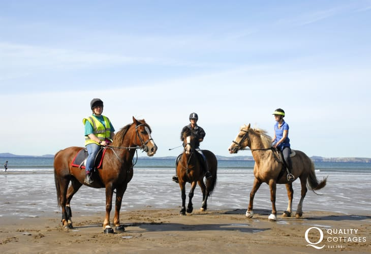 Book a beach ride with Nolton Riding Stables