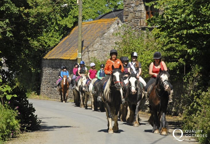 Crosswell Riding Stables near Newport caters for beginners and more experienced rider