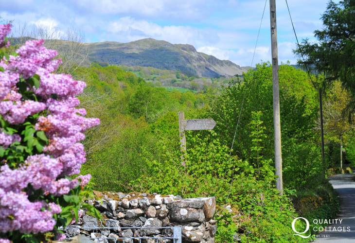 Romantic cottage North Wales - view