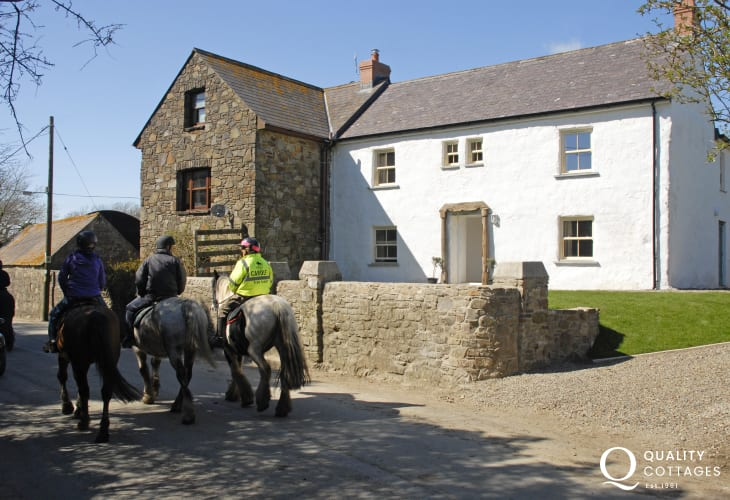 Watch the horses from the gardens as they pass by heading for the beach