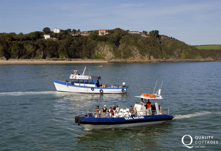 Seal Safari's and Island cruises sail from Tenby's harbour