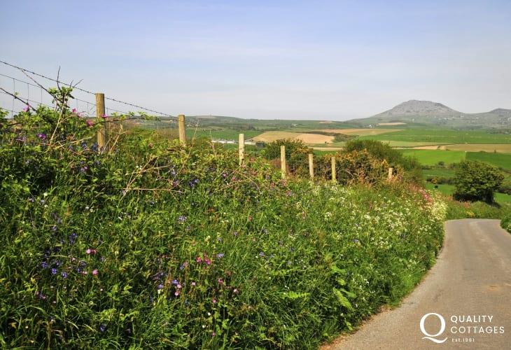 Welsh coastal cottage - lane