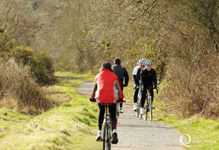 The Brunel Cycle Track passes through Westfield Pill Nature Reserve - 'Mikes Bikes' will deliver bicycles to your door