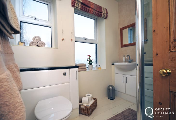 Llyn Peninsula holiday cottage, sleeps 11 people - shower room with WC, washbasin and shower.